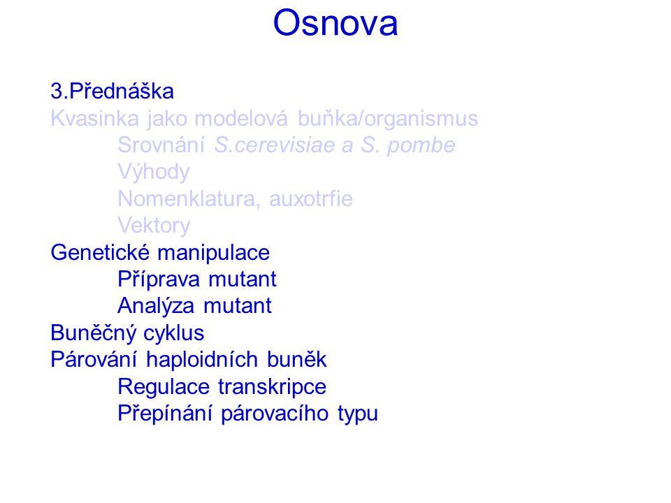 Osnova 3.Přednáška Kvasinka jako modelová buňka/organismus Srovnání S.cerevisiae a S.