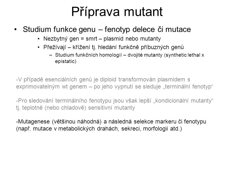 """Příprava mutant -V případě esenciálních genů je diploid transformován plasmidem s exprimovatelným wt genem – po jeho vypnutí se sleduje """"terminální fenotyp -Pro sledování terminálního fenotypu jsou však lepší """"kondicionální mutanty tj."""