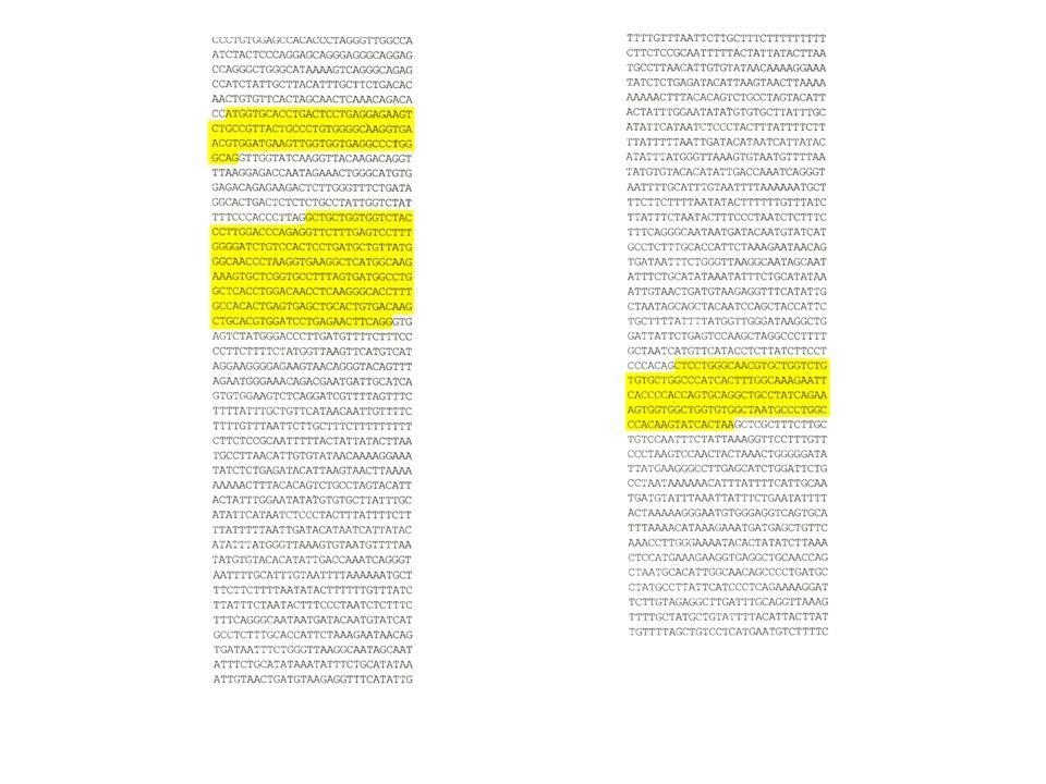 Řešení problému: syntéza DNA na konci DNA řetězců – v tzv.
