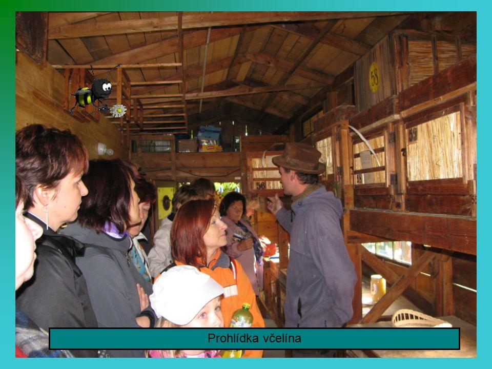 Na výlet s turisty jelo i devatenáct pionýrů