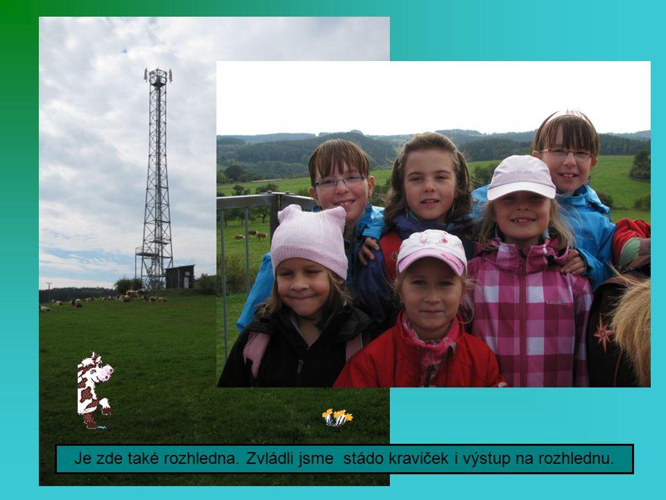 Vystoupali jsme na Křížový vrch nad Česticemi