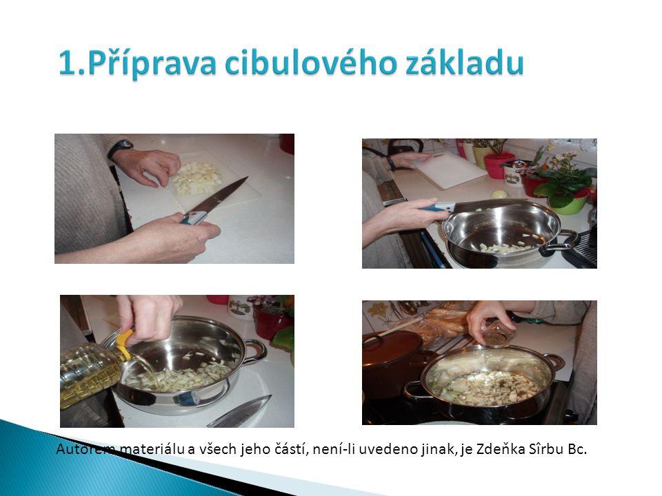 Autorem materiálu a všech jeho částí, není-li uvedeno jinak, je Zdeňka Sîrbu Bc.