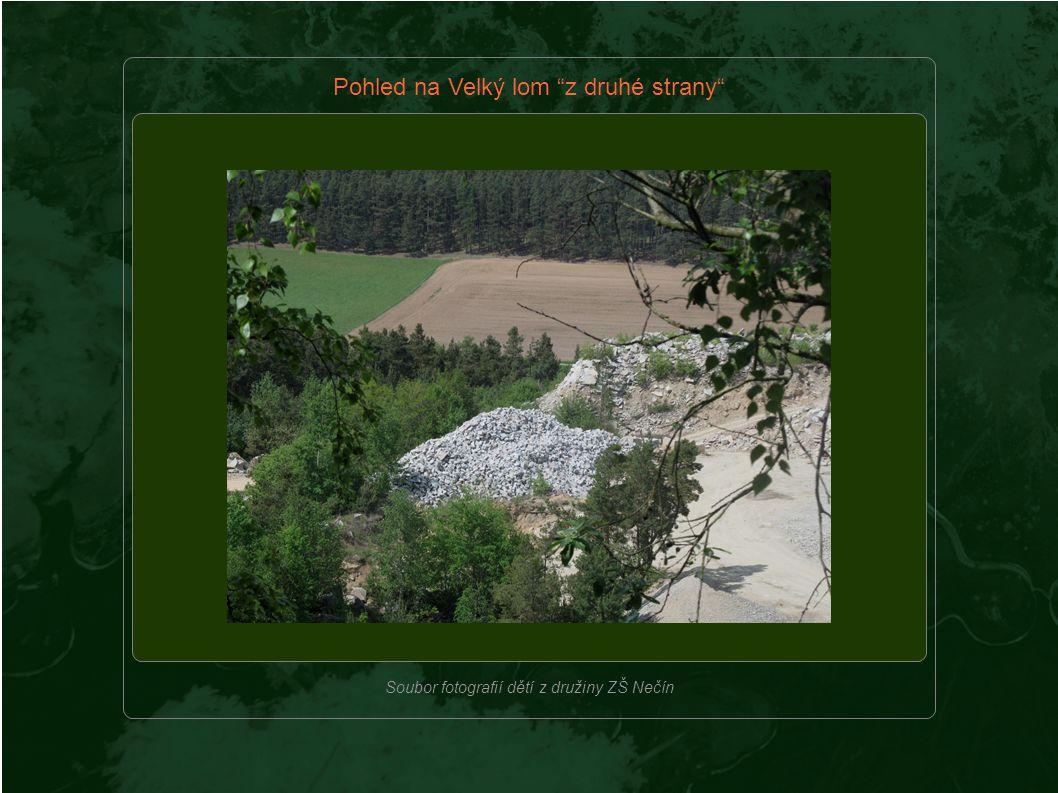 Místo pro život – Environmentální prvek Áďa Kozová, Marek Dvořák, Adam Čargo