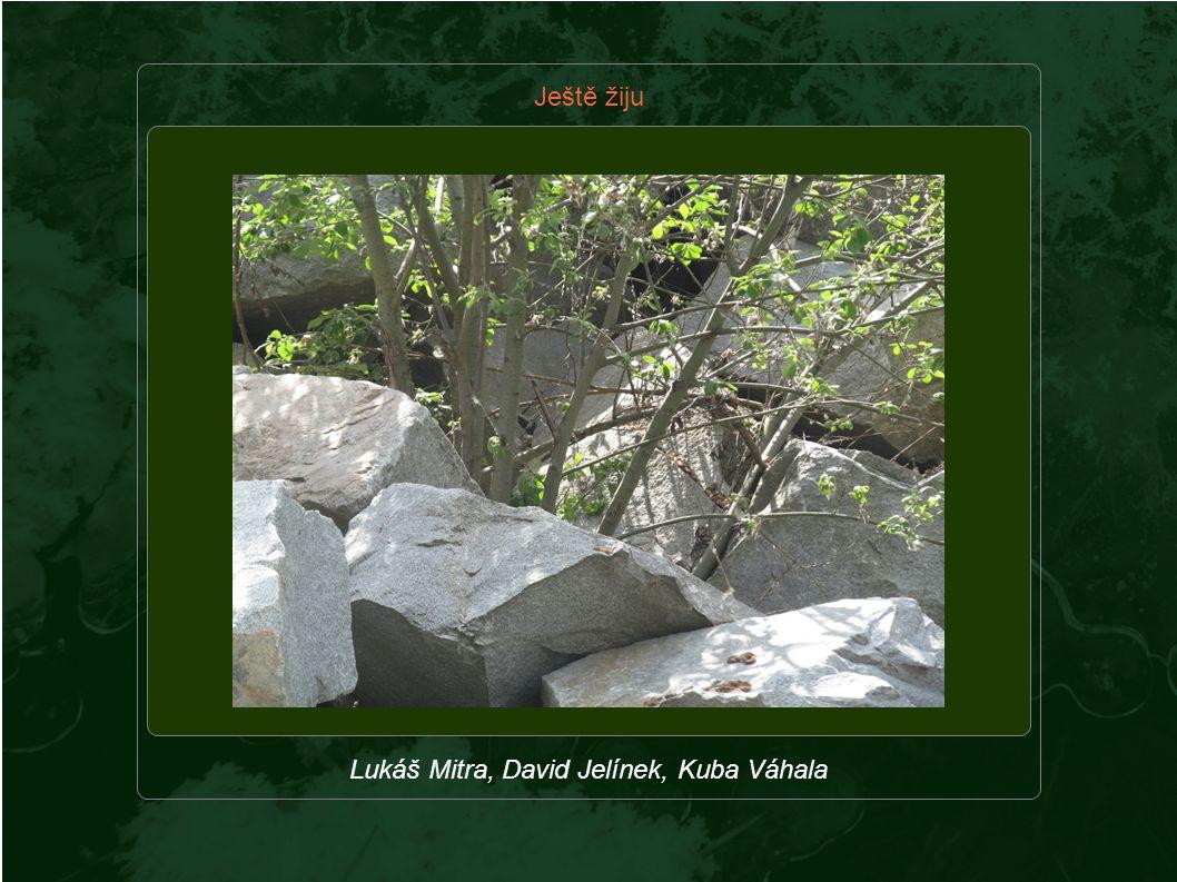 Ještě žiju Lukáš Mitra, David Jelínek, Kuba Váhala