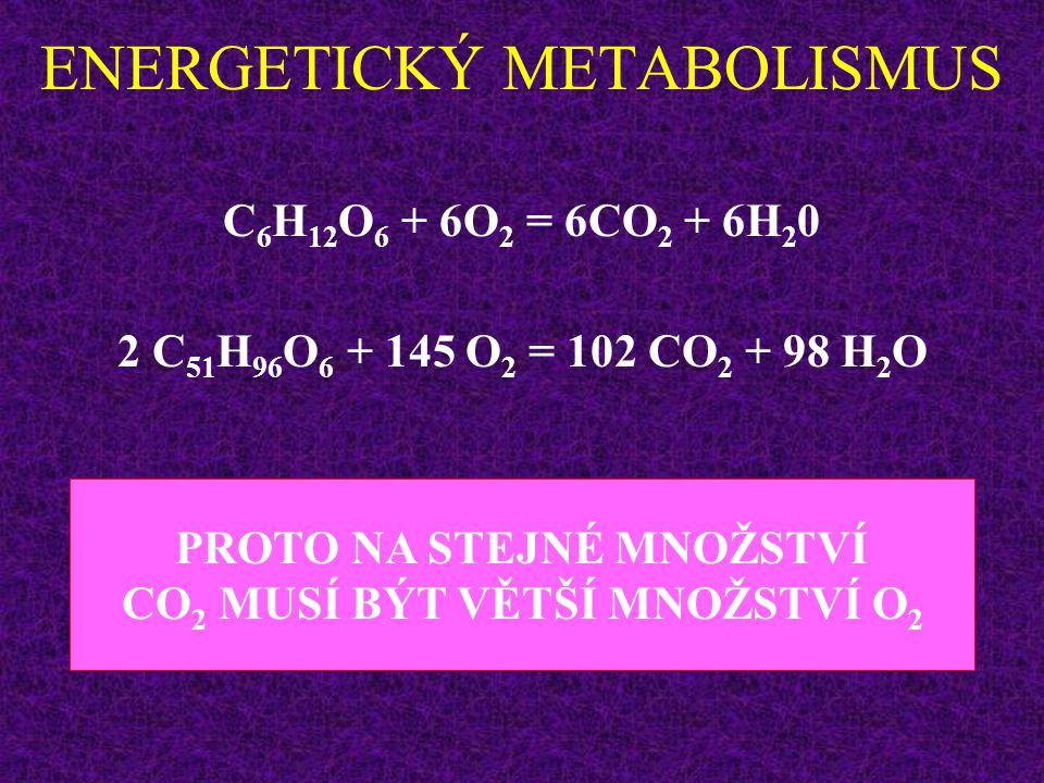 ENERGETICKÝ METABOLISMUS Proč.