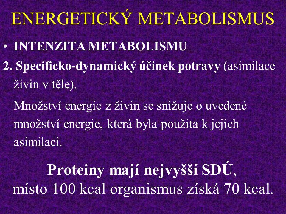 ENERGETICKÝ METABOLISMUS INTENZITA METABOLISMU 2.