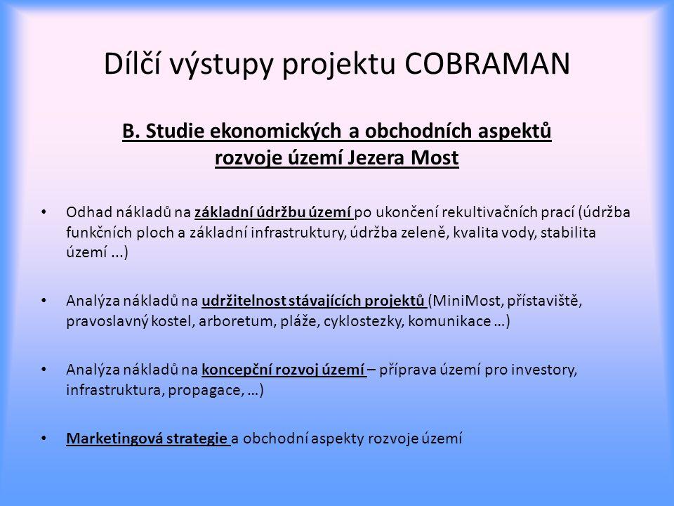 Dílčí výstupy projektu COBRAMAN B.