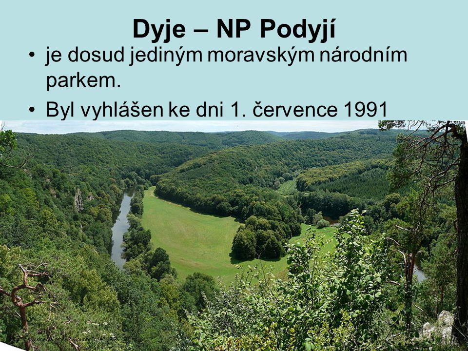 Dyje – NP Podyjí je dosud jediným moravským národním parkem.