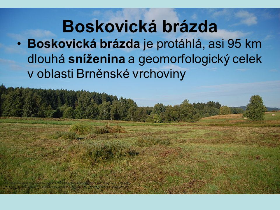 Boskovická brázda Boskovická brázda je protáhlá, asi 95 km dlouhá sníženina a geomorfologický celek v oblasti Brněnské vrchoviny http://cs.wikipedia.org/wiki/Soubor:P%C5%99%C3%ADrodn%C3%AD_rezervace_Uhliska_- _foto_2,_Horn%C3%AD_%C5%A0t%C4%9Bp%C3%A1nov,_okres_Prost%C4%9Bjov.jpg