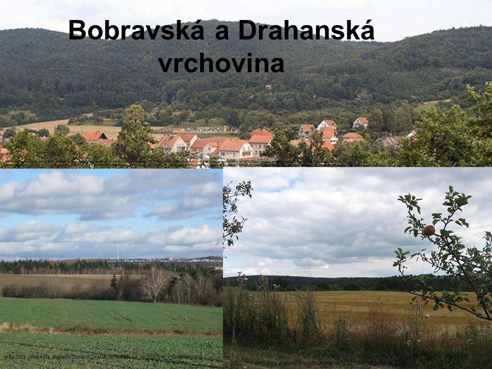 Bobravská a Drahanská vrchovina http://www.google.cz/imgres q=bobravsk%C3%A1+vrchovina&um=1&hl=cs&sa=N&biw=1366&bih=652&tbm=isch&tbnid=fqPHe8zO8R6FCM:&imgrefurl=http://www.chudcice.cz/index.php%3Foption%3Dcom_content%26view%3Darticle%26id%3D6%26Itemid%3D48&docid=OG- wqx4lN4SgZM&imgurl=http://www.chudcice.cz/obrazky/oobci/chud_poz.jpg&w=607&h=216&ei=ZHJ8UIuqA4Lm4QS6woDwCQ&zoom=1&iact=hc&vpx=537&vpy=171&dur=142&hovh=134&hovw=377&tx=214&ty=68&sig=116783904803300009518&page=1&tbnh=96&tbnw=244&start=0&ndsp=15&ved=1t:429,r:2,s:0,i:75 http://cs.wikipedia.org/wiki/Soubor:Drahansk%C3%A1_vrchovina_-_Drahany.jpg http://cs.wikipedia.org/wiki/Soubor:Drahansk%C3%A1_vrchovina_1.jpg