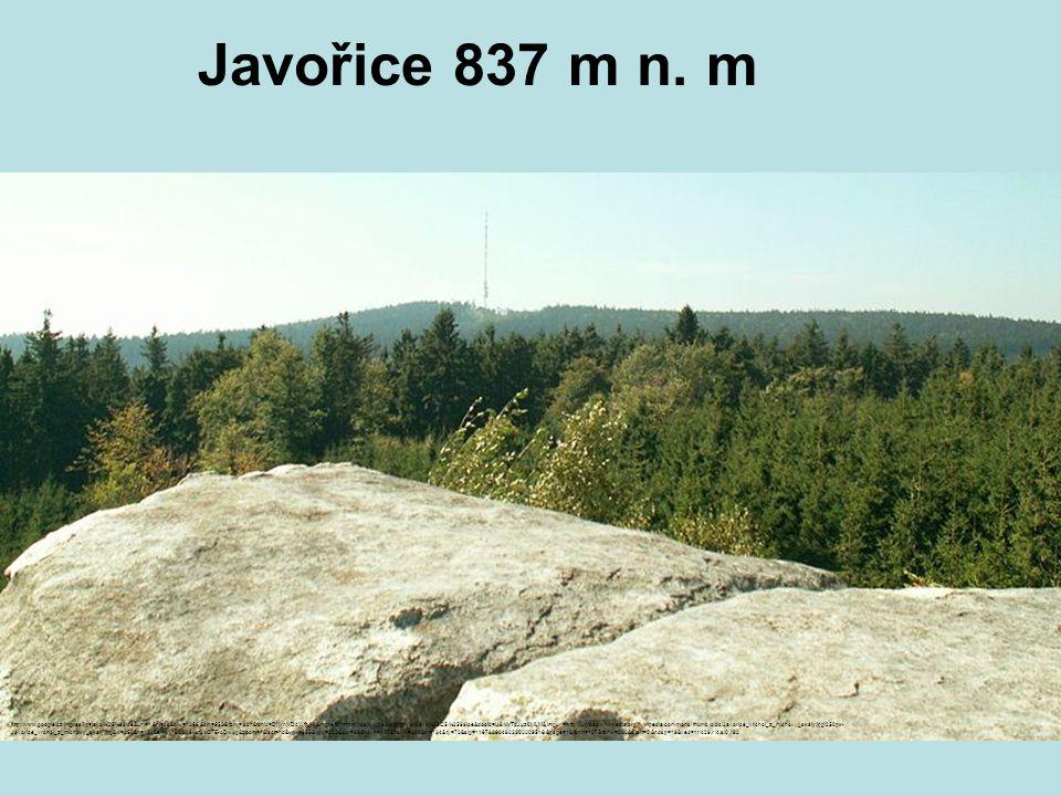 Javořice 837 m n. m http://www.google.cz/imgres?q=javo%C5%99ice&um=1&hl=cs&biw=1366&bih=652&tbm=isch&tbnid=DjjlrnjVDcWfhM:&imgrefurl=http://cs.wikiped