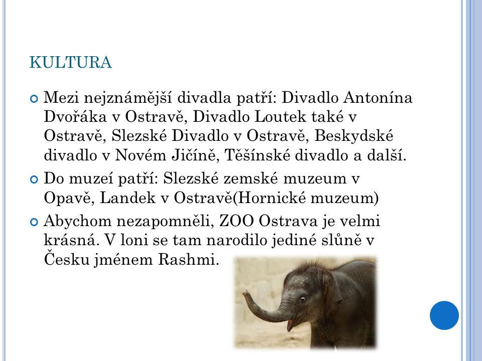 KULTURA Mezi nejznámější divadla patří: Divadlo Antonína Dvořáka v Ostravě, Divadlo Loutek také v Ostravě, Slezské Divadlo v Ostravě, Beskydské divadl