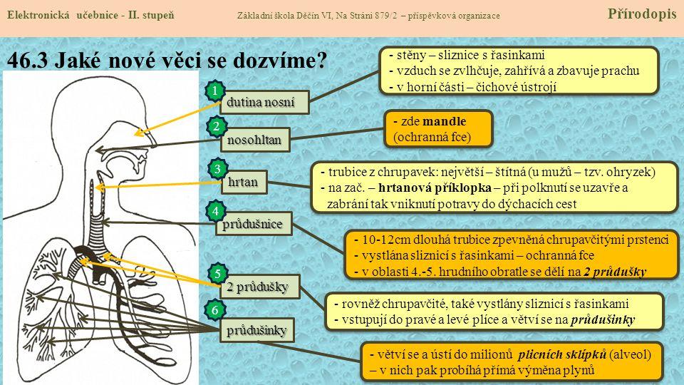 46.4 Co dalšího o dýchací soustavě.Elektronická učebnice - II.