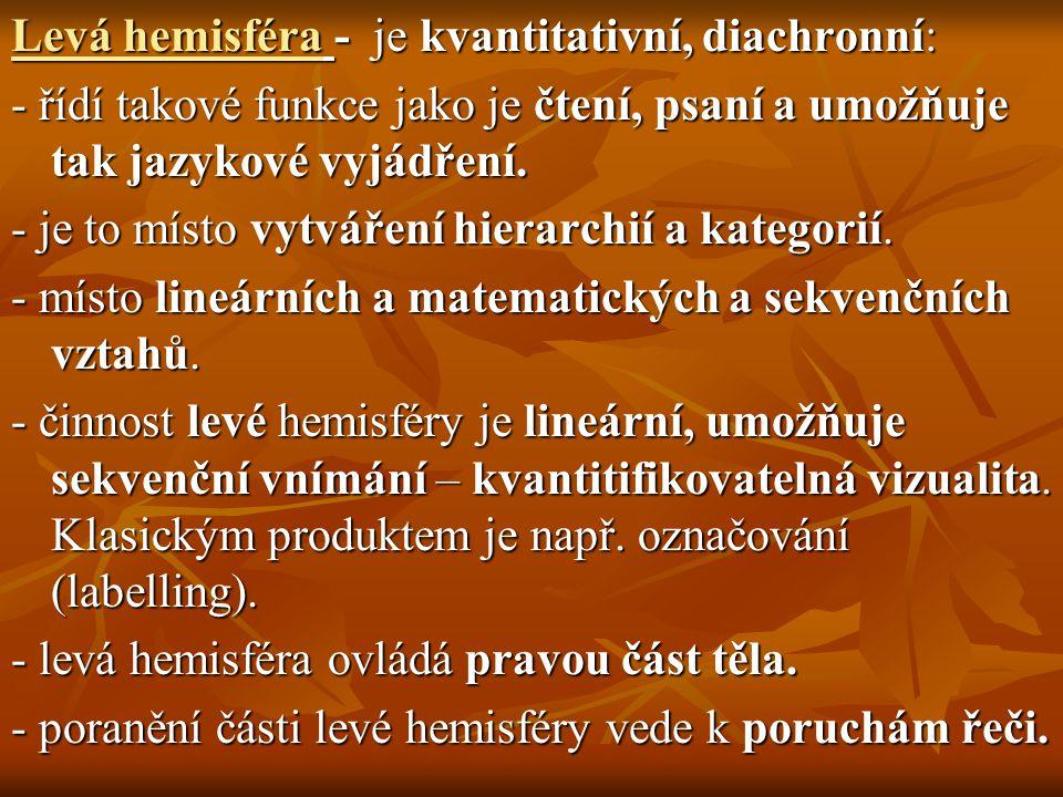 Levá hemisféra - je kvantitativní, diachronní: - řídí takové funkce jako je čtení, psaní a umožňuje tak jazykové vyjádření. - je to místo vytváření hi