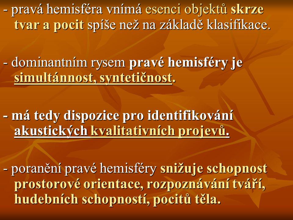 - pravá hemisféra vnímá esenci objektů skrze tvar a pocit spíše než na základě klasifikace. - dominantním rysem pravé hemisféry je simultánnost, synte