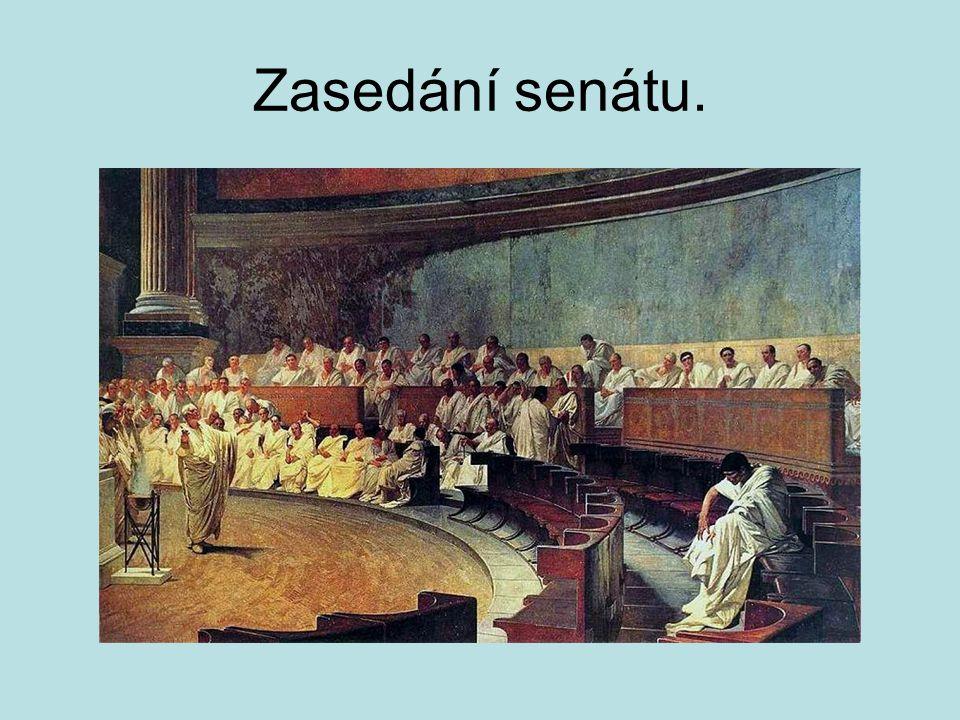 Zasedání senátu.