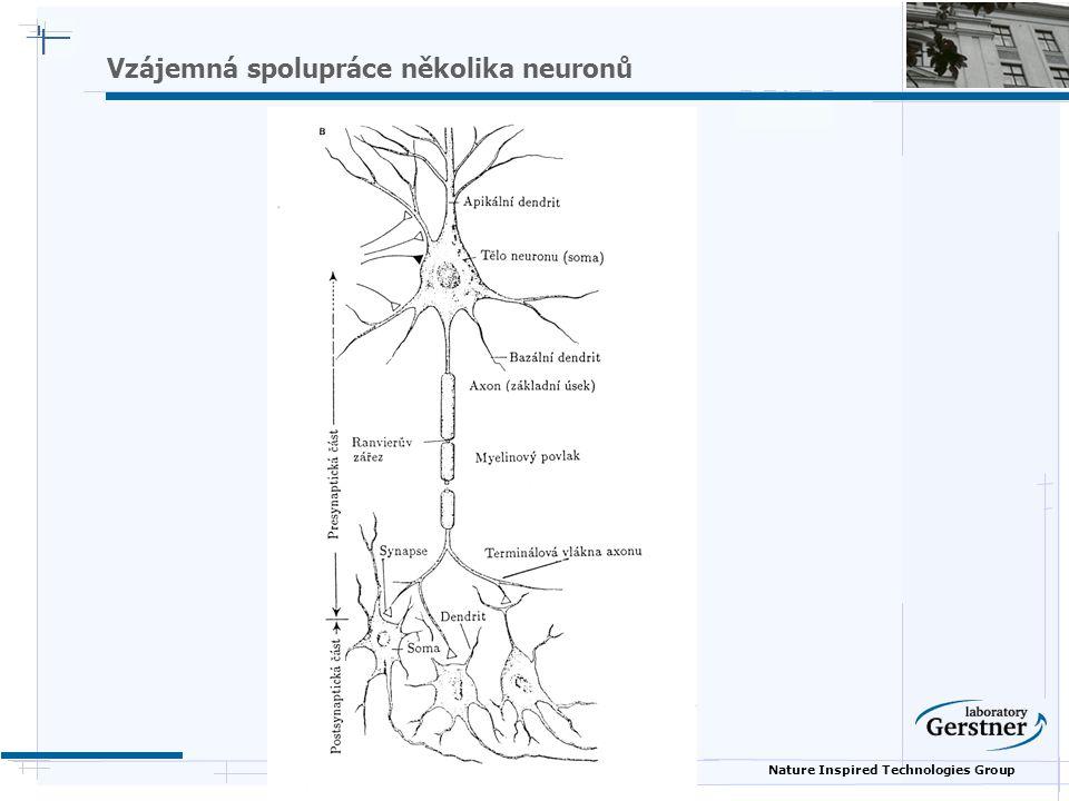 Nature Inspired Technologies Group Vzájemná spolupráce několika neuronů