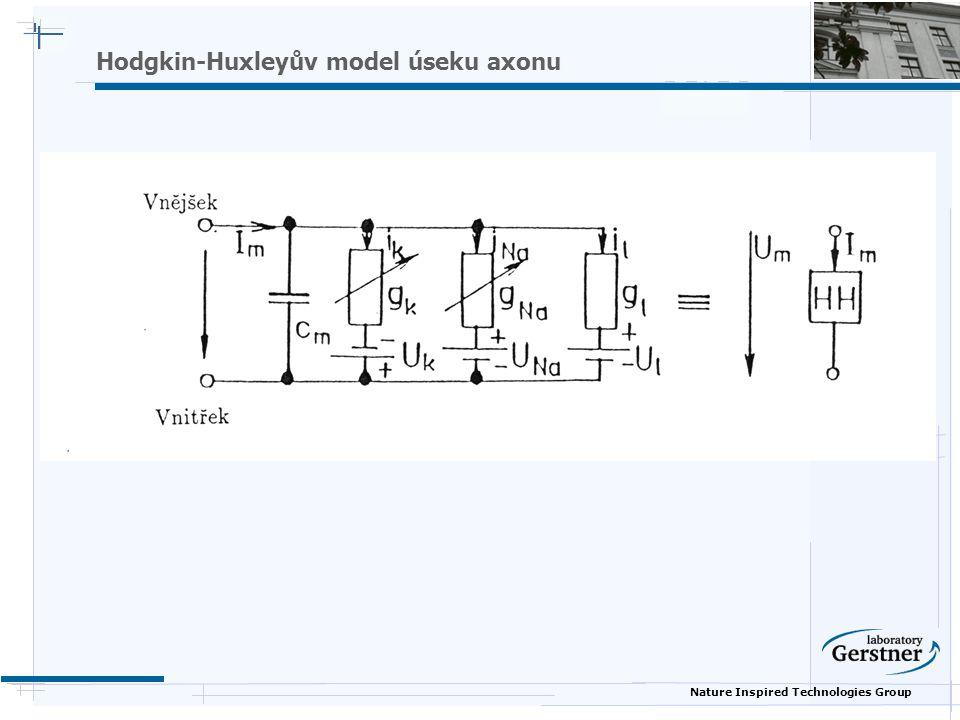 Nature Inspired Technologies Group Hodgkin-Huxleyův model úseku axonu