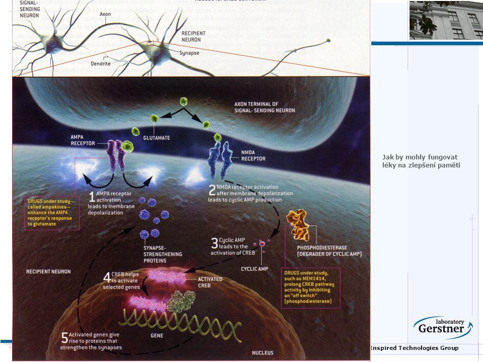 Nature Inspired Technologies Group Jak by mohly fungovat léky na zlepšení paměti
