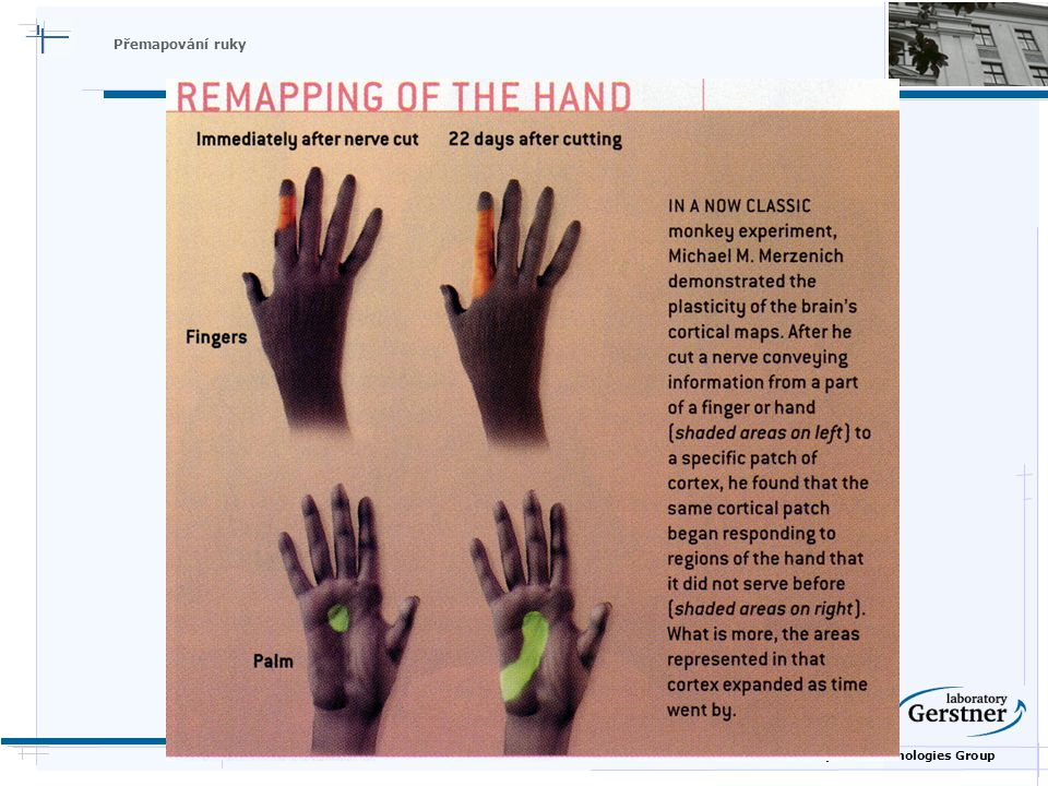 Nature Inspired Technologies Group Přemapování ruky