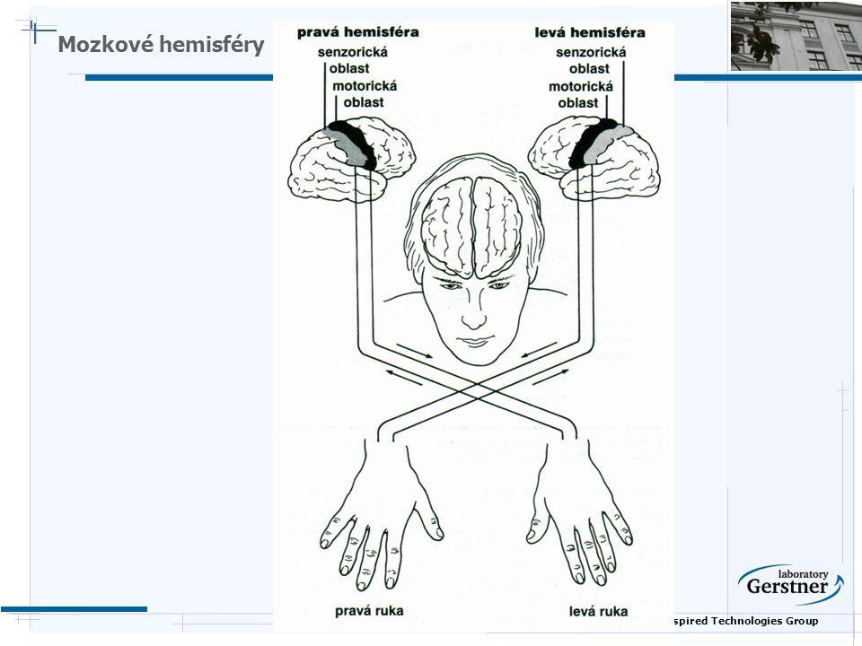 Nature Inspired Technologies Group Mozkové hemisféry