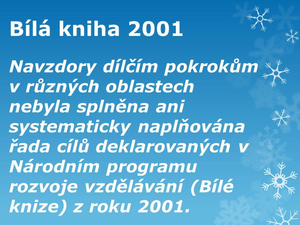 Bílá kniha 2001 Navzdory dílčím pokrokům v různých oblastech nebyla splněna ani systematicky naplňována řada cílů deklarovaných v Národním programu ro
