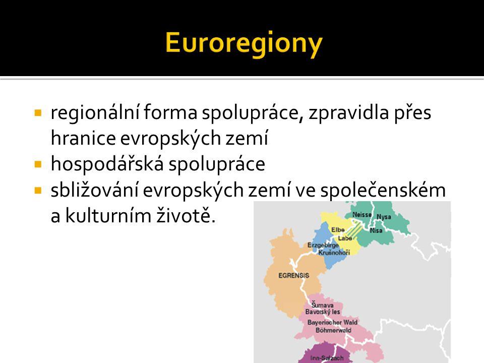  regionální forma spolupráce, zpravidla přes hranice evropských zemí  hospodářská spolupráce  sbližování evropských zemí ve společenském a kulturním životě.