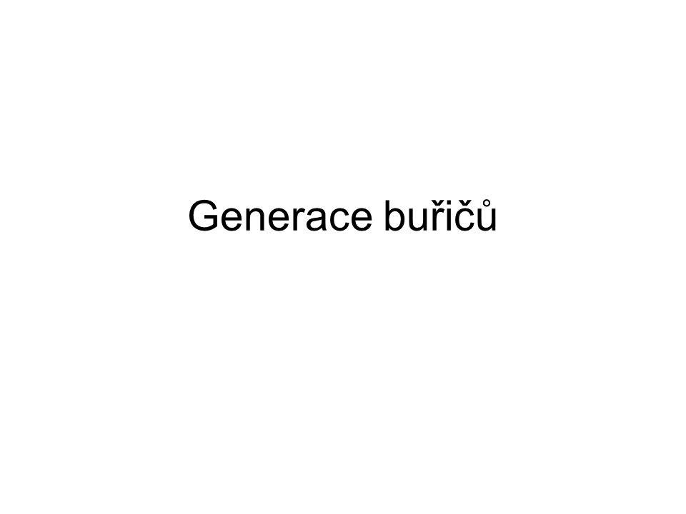 Generace buřičů