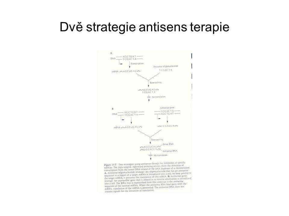 Dvě strategie antisens terapie