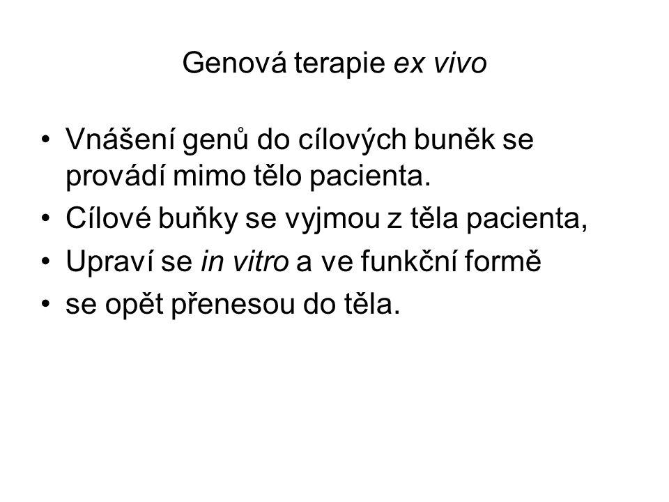 Ex vivo genová terapie