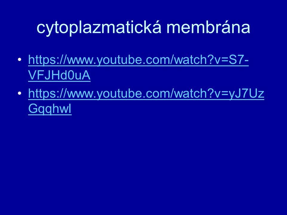 cytoplazmatická membrána https://www.youtube.com/watch?v=S7- VFJHd0uAhttps://www.youtube.com/watch?v=S7- VFJHd0uA https://www.youtube.com/watch?v=yJ7U