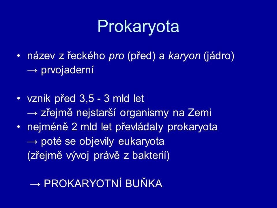 Prokaryota název z řeckého pro (před) a karyon (jádro) → prvojaderní vznik před 3,5 - 3 mld let → zřejmě nejstarší organismy na Zemi nejméně 2 mld let