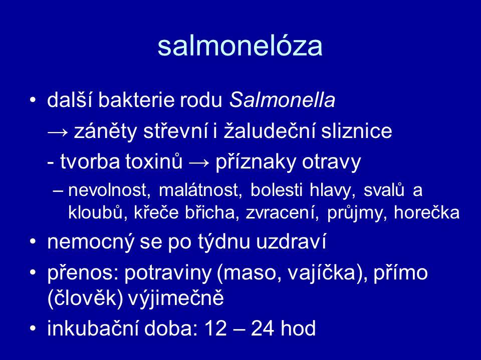 salmonelóza další bakterie rodu Salmonella → záněty střevní i žaludeční sliznice - tvorba toxinů → příznaky otravy –nevolnost, malátnost, bolesti hlavy, svalů a kloubů, křeče břicha, zvracení, průjmy, horečka nemocný se po týdnu uzdraví přenos: potraviny (maso, vajíčka), přímo (člověk) výjimečně inkubační doba: 12 – 24 hod