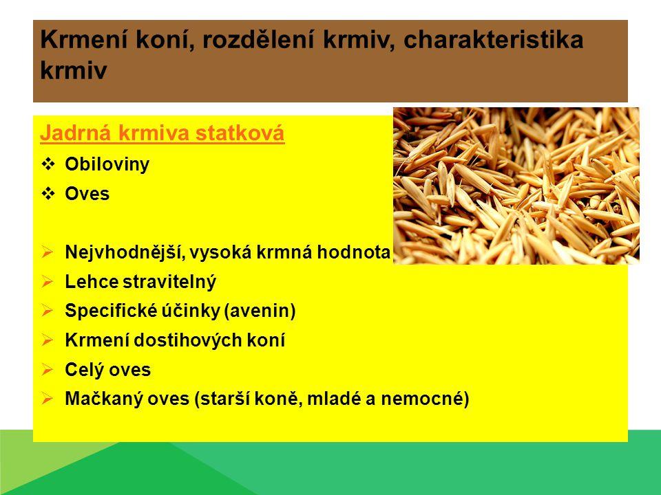 Krmení koní, rozdělení krmiv, charakteristika krmiv Jadrná krmiva statková  Obiloviny  Oves  Nejvhodnější, vysoká krmná hodnota  Lehce stravitelný