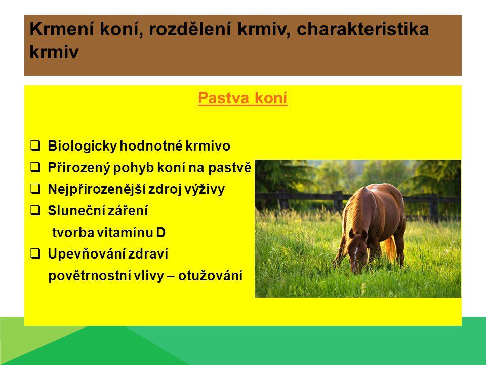 Krmení koní, rozdělení krmiv, charakteristika krmiv Pastva koní  Biologicky hodnotné krmivo  Přirozený pohyb koní na pastvě  Nejpřirozenější zdroj