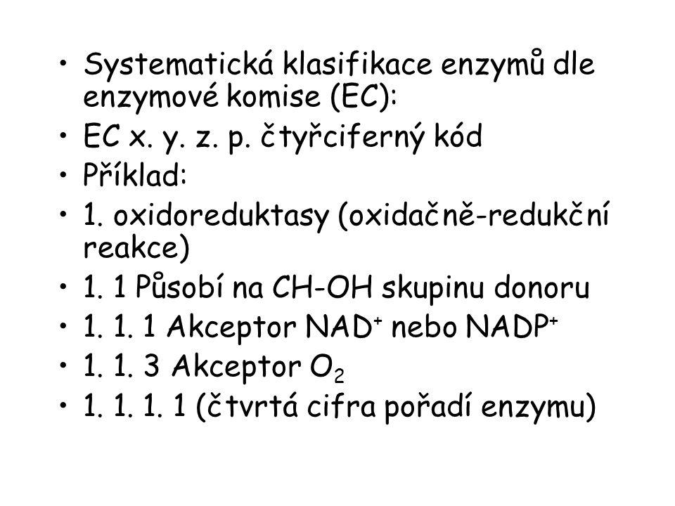 Systematická klasifikace enzymů dle enzymové komise (EC): EC x. y. z. p. čtyřciferný kód Příklad: 1. oxidoreduktasy (oxidačně-redukční reakce) 1. 1 Pů