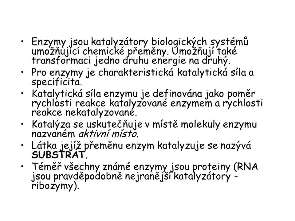 Enzymy jsou katalyzátory biologických systémů umožňující chemické přeměny. Umožňují také transformaci jedno druhu energie na druhý. Pro enzymy je char