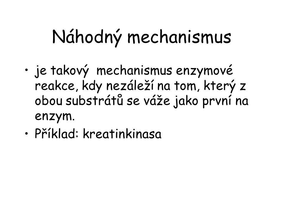 Náhodný mechanismus je takový mechanismus enzymové reakce, kdy nezáleží na tom, který z obou substrátů se váže jako první na enzym.