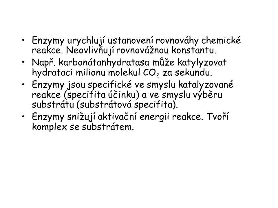 Enzymy urychlují ustanovení rovnováhy chemické reakce. Neovlivňují rovnovážnou konstantu. Např. karbonátanhydratasa může katylyzovat hydrataci milionu