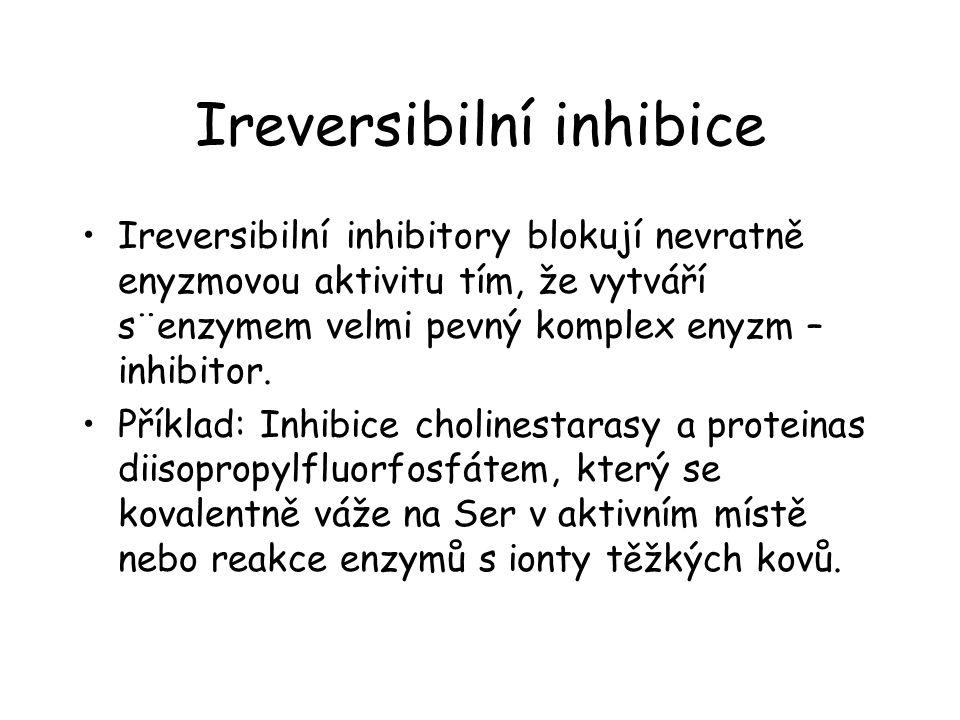 Ireversibilní inhibice Ireversibilní inhibitory blokují nevratně enyzmovou aktivitu tím, že vytváří s¨enzymem velmi pevný komplex enyzm – inhibitor.