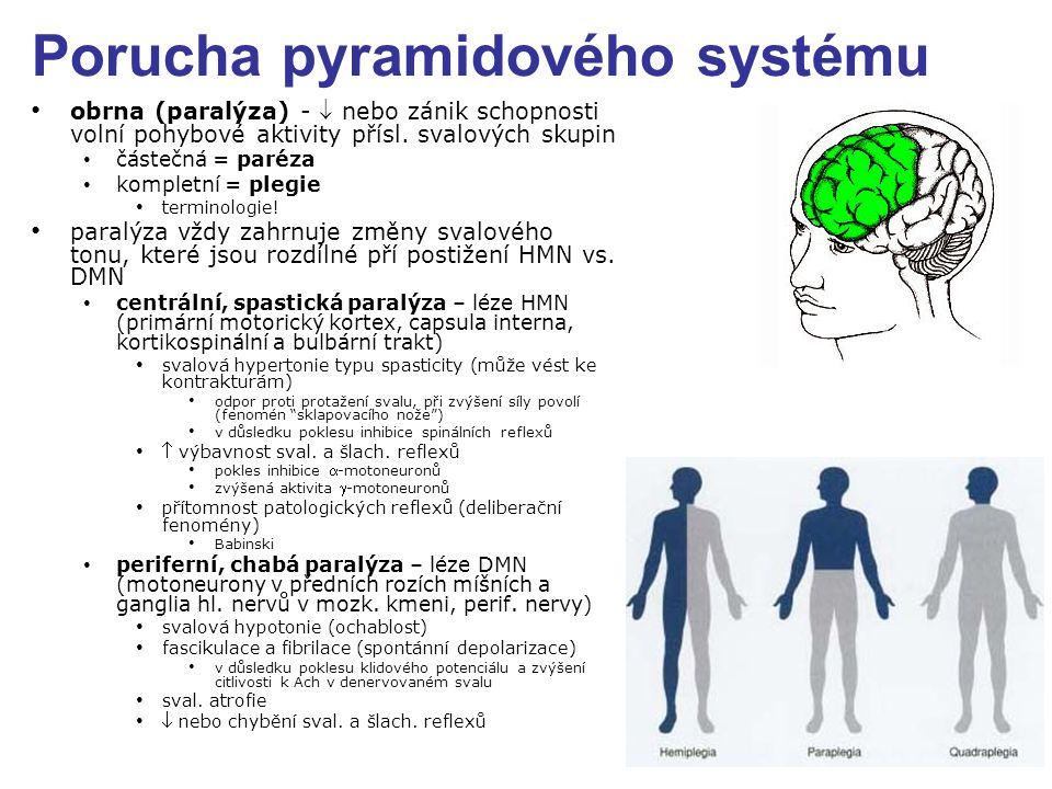 Porucha pyramidového systému obrna (paralýza) -  nebo zánik schopnosti volní pohybové aktivity přísl. svalových skupin částečná = paréza kompletní =