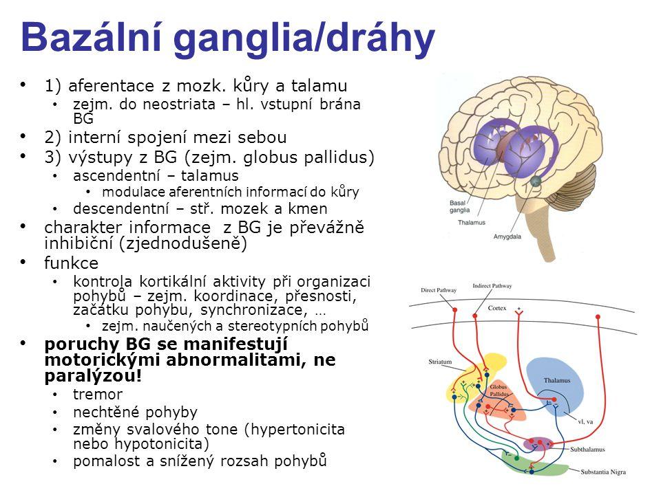 Bazální ganglia/dráhy 1) aferentace z mozk.kůry a talamu zejm.