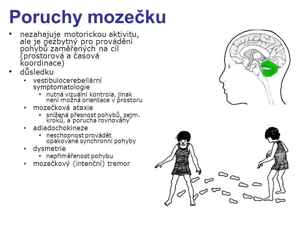 Poruchy mozečku nezahajuje motorickou aktivitu, ale je nezbytný pro provádění pohybů zaměřených na cíl (prostorová a časová koordinace) důsledku vesti