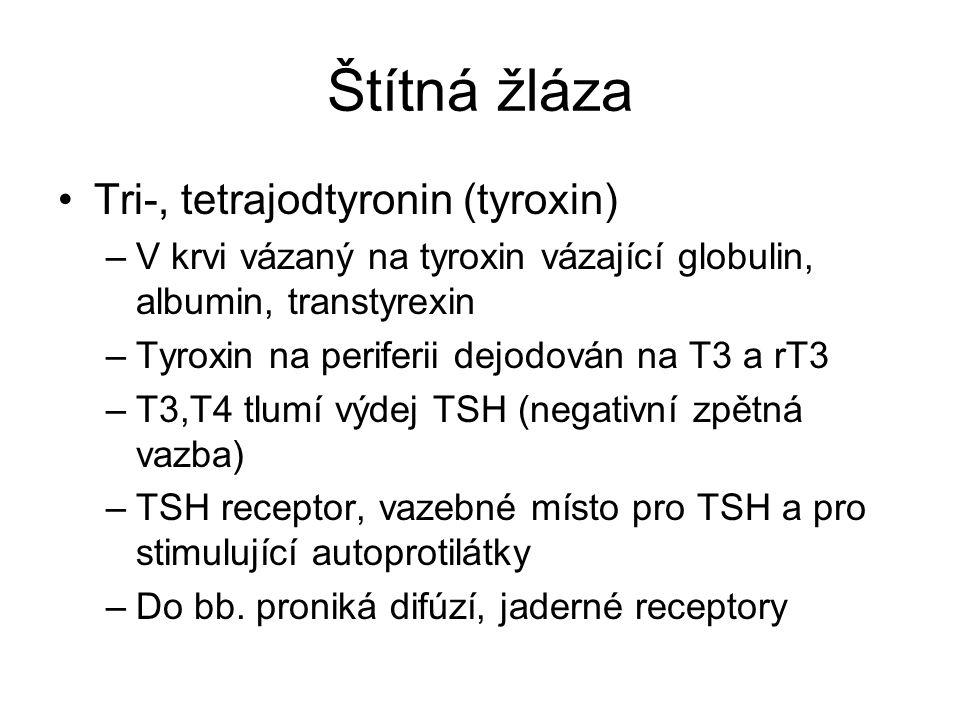 Štítná žláza Tri-, tetrajodtyronin (tyroxin) –V krvi vázaný na tyroxin vázající globulin, albumin, transtyrexin –Tyroxin na periferii dejodován na T3