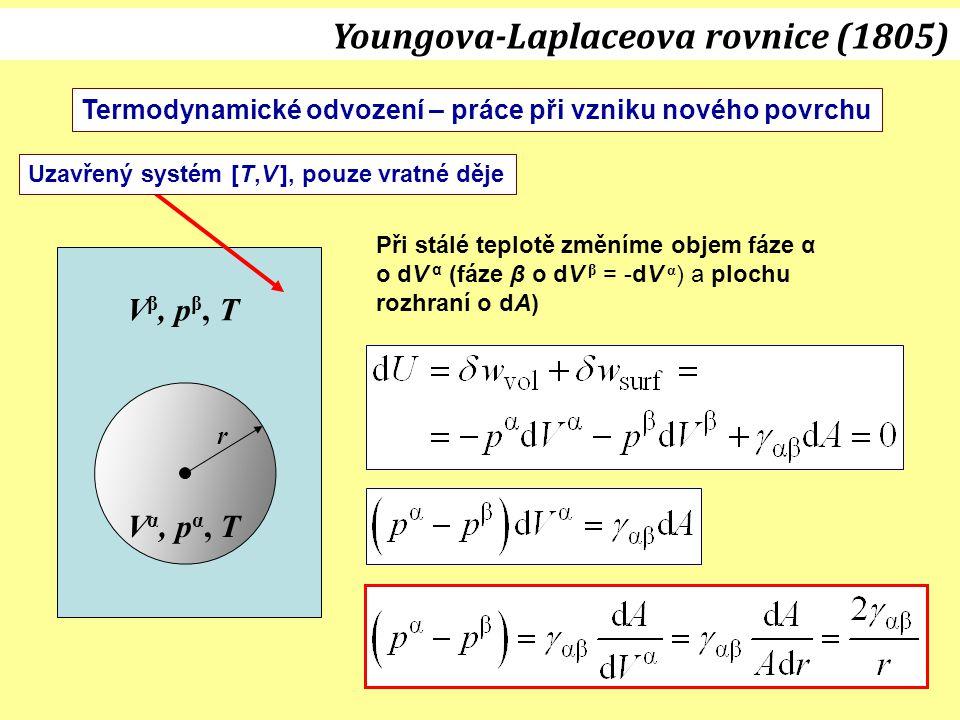V α, p α, T V β, p β, T r Uzavřený systém [T,V ], pouze vratné děje Při stálé teplotě změníme objem fáze α o dV α (fáze β o dV β = -dV α ) a plochu ro