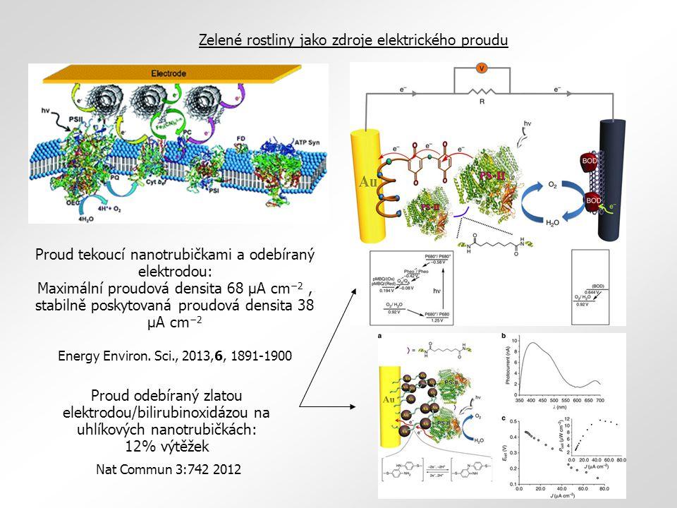 Proud tekoucí nanotrubičkami a odebíraný elektrodou: Maximální proudová densita 68 μA cm −2, stabilně poskytovaná proudová densita 38 μA cm −2 Energy