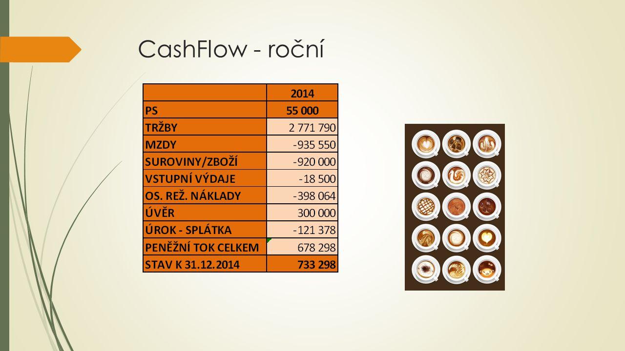 CashFlow - roční