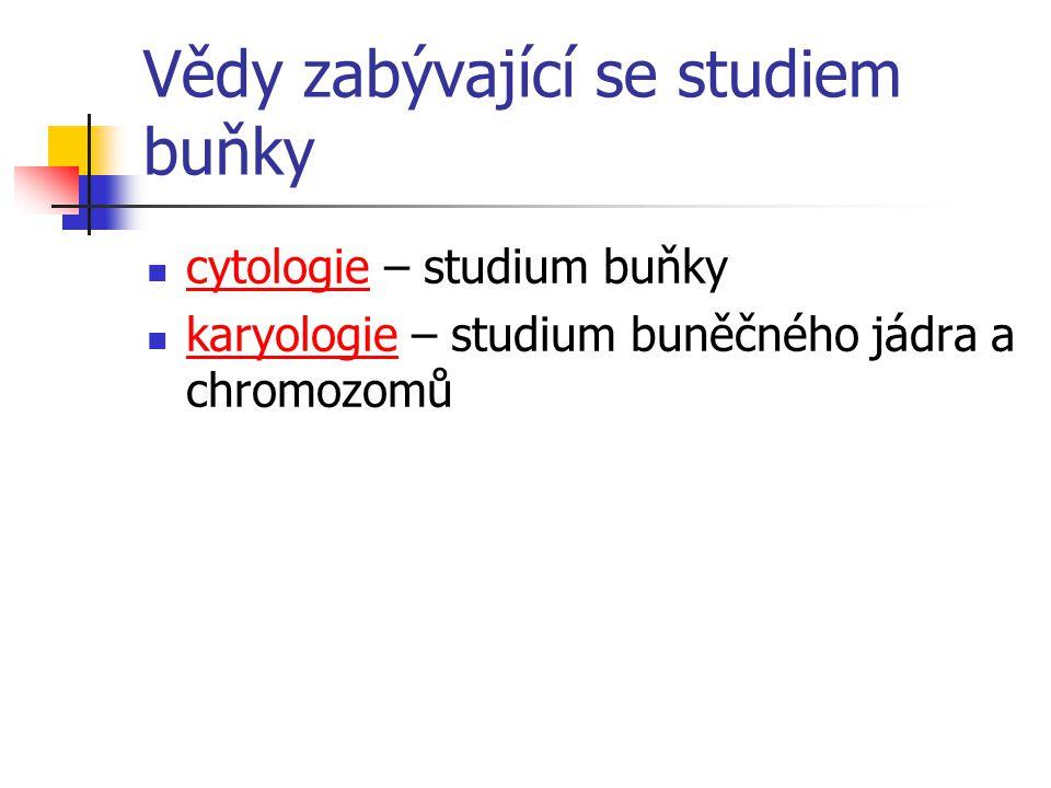 Vědy zabývající se studiem buňky cytologie – studium buňky karyologie – studium buněčného jádra a chromozomů