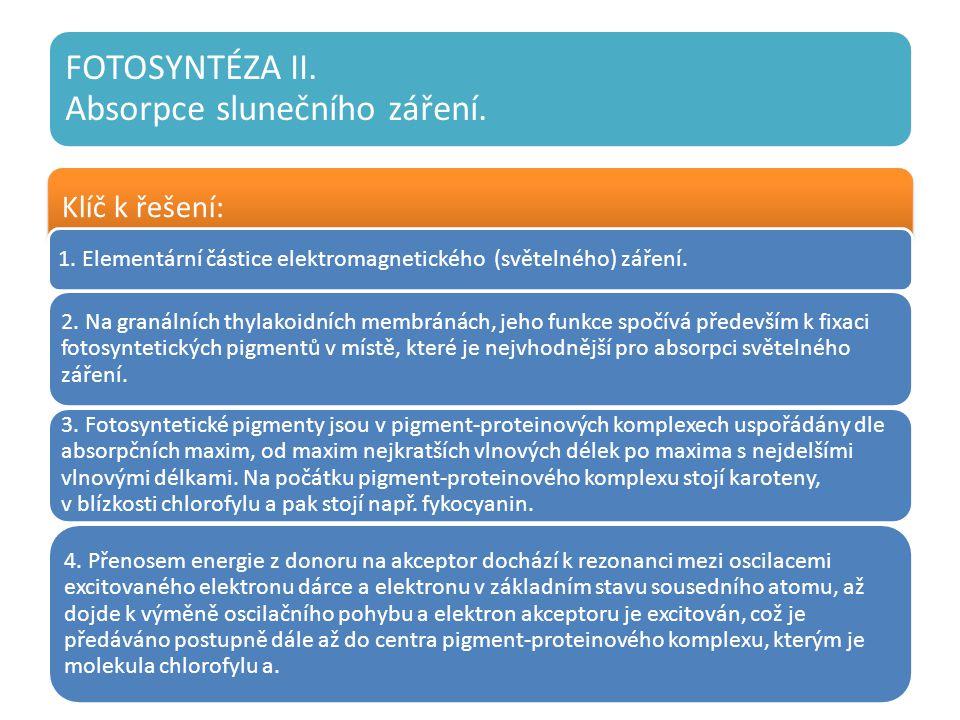 FOTOSYNTÉZA II. Absorpce slunečního záření. Klíč k řešení: 1.