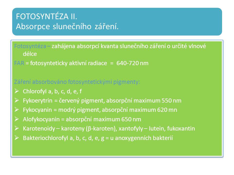 FOTOSYNTÉZA II. Absorpce slunečního záření.